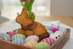 Home made easter bunny cake stock photo