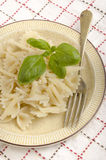 Home made farfalle on a plate Stock Images