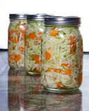 Home made fermented vegetables stock photography