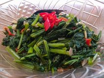 Home made food green mustard vegetables or tumis sayur sawi with slice of red chili topping stock photos