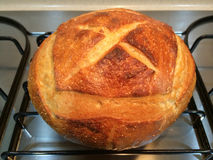 Home Made French boule Bread Stock Images