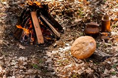 Home-made fresh bread on the background of fire in the autumn forest stock photography