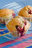The home-made fresh cherry muffins. Three handmade cherry muffins lying on the table cloth withy blue, red and yellow stripes royalty free stock photos