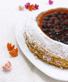 Home made fruit tart. Fresh home made fruit tart Stock Image
