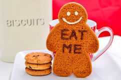 Home made gingerbread man Royalty Free Stock Photo