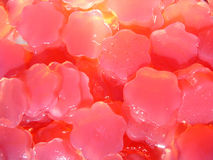Home made gummies candy. Home made gummies flowers with beetroot and agar agar Royalty Free Stock Images