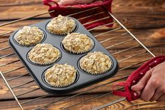Healthy grain free muffins baked with nut flours and coconut flour. Baked in re-usable silicon forms. royalty free stock photos