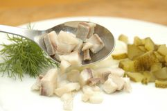 Home made herrings salad. With herring, onion, apple, pepper and mayonaise Royalty Free Stock Photos