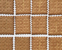 Home made ice cream sandwich Stock Images