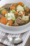 Home made irish lamb stew Royalty Free Stock Photo