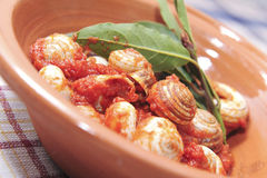 Home made italian cuisine Royalty Free Stock Photo