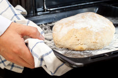Home-made loaf of bread Royalty Free Stock Image
