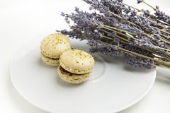 Home-made macaroons on a white plate with lavender Stock Image