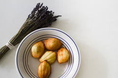 Home made Madeleine cookies on plate, lavender Stock Photography
