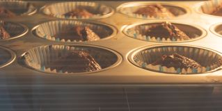 Home made Muffin with chocolate royalty free stock photos