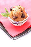 Home-made muffins Royalty Free Stock Images