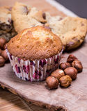 Home made muffins Stock Photography