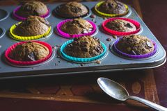 Home made muffins Royalty Free Stock Photography