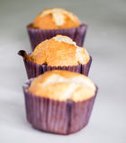 Home made muffins. A lot of homemade muffins,focus on center Royalty Free Stock Photo