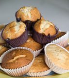 Home made muffins. A lot of homemade muffins, focus on the center,square format Stock Photography