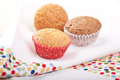Home made muffins Stock Photos