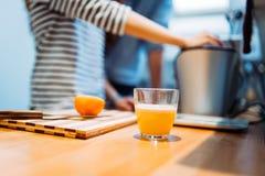 Home made orange juice Royalty Free Stock Photo