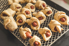 Home Made Pigs in a Blanket Royalty Free Stock Photo