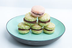 Home-made pistachio macaroons on plate Stock Photo