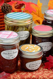 Home made preserves. Of vegetables and spices in colorful autumn display Stock Image