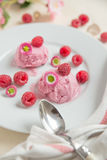Home made raspberry ice cream. With fresh raspberries on a plate Stock Image