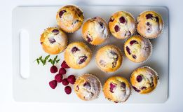 Home made raspberry muffins Royalty Free Stock Photography