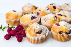 Home made raspberry muffins Royalty Free Stock Photos