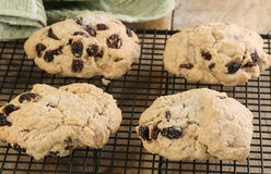 Home made rock buns Stock Photos