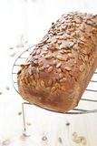 Home made rye bread Stock Photo