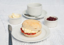 Home made scone with jam and clotted cream Royalty Free Stock Photos