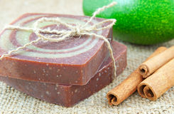 Home-made soap with avocado and cinnamon sticks Stock Images