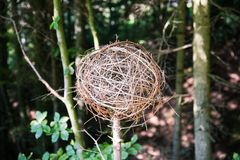 Home Made Spheric Twig Garden Decorations royalty free stock photo