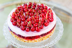 Home made sweet cherry cake. Royalty Free Stock Photography