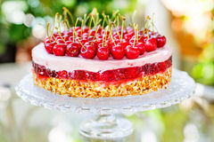 Home made sweet cherry cake. Stock Photos