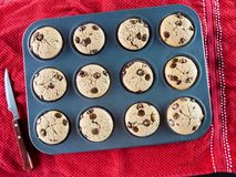 Vanilla and chocolate chips muffins royalty free stock photo