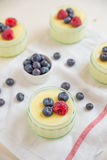 Home made vanilla pudding Royalty Free Stock Image
