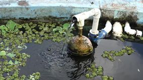 A home-made water pump in the tropics. A device made with spare parts servicing a fish pond in the caribbean stock video footage