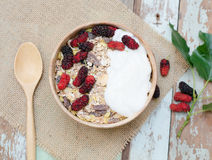 home made yogurt with oat flakes  in bowl Stock Photography