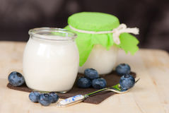 Home made yogurt Stock Images