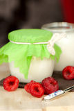 Home made yogurt Royalty Free Stock Photography
