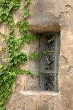 home murgröna för Adobe royaltyfri bild
