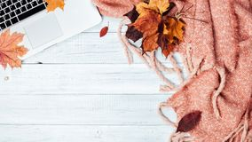 Home office desktop with a laptop, cozy warm pink plaid. And autumn maple yellow and red leaves. Wooden white table, flat lay. Winter or autumn background, top stock photos