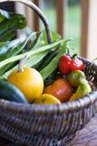 HOME orgânica - vegetais crescidos Fotografia de Stock Royalty Free