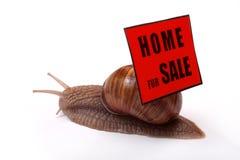 HOME para a venda fotos de stock