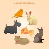 Home Pets Set: Carrot, Dog, Rabbit, Fish and Cats. Vector illustration Stock Photos